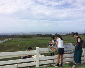 ヤギと富山湾