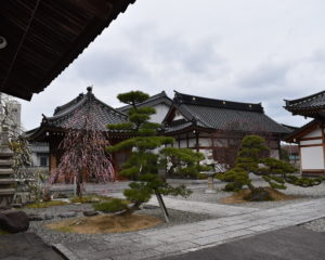 西徳寺のお庭
