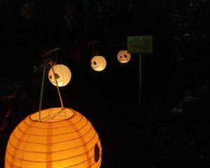 ランタン提灯