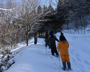 雪山散策イメージ