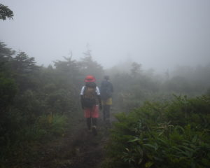 この日はとにかく霧