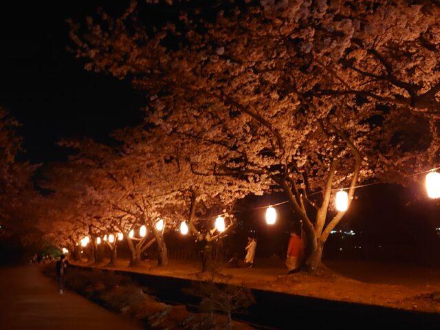 宮野の桜まつり